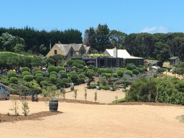 Mudbrick Vineyard, New Zealand
