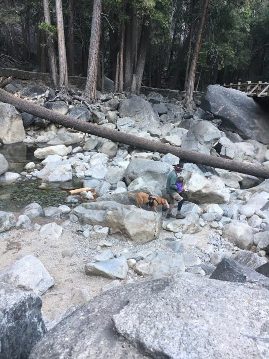 Yosemite Falls Rocks