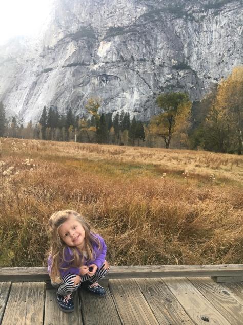 Sentinel/Cooks Meadow, Yosemite