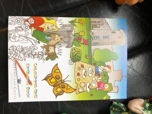 Dromoland Castle Kid's Activity Book